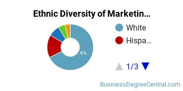 Marketing Majors in CO Ethnic Diversity Statistics