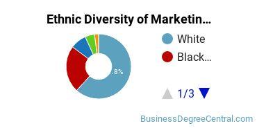Marketing Majors in GA Ethnic Diversity Statistics