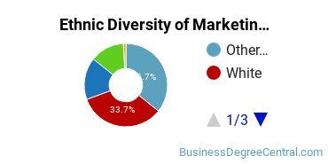 Marketing Majors in HI Ethnic Diversity Statistics