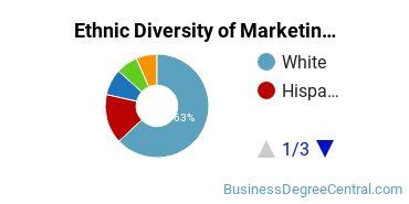Marketing Majors in IL Ethnic Diversity Statistics