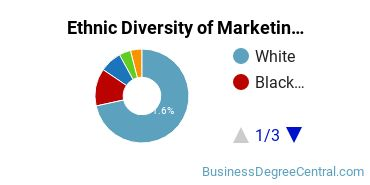 Marketing Majors in LA Ethnic Diversity Statistics