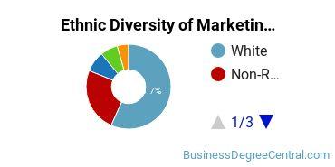 Marketing Majors in MA Ethnic Diversity Statistics