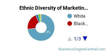 Marketing Majors in MS Ethnic Diversity Statistics