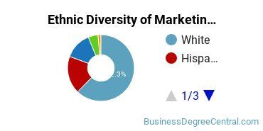 Marketing Majors in NV Ethnic Diversity Statistics
