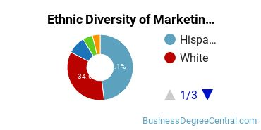 Marketing Majors in NM Ethnic Diversity Statistics