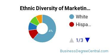 Marketing Majors in NY Ethnic Diversity Statistics