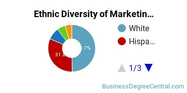Marketing Majors in TX Ethnic Diversity Statistics
