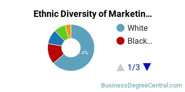 Marketing Majors in VA Ethnic Diversity Statistics