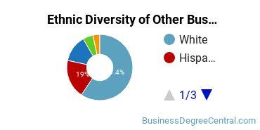 Other Business & Marketing Majors in AZ Ethnic Diversity Statistics