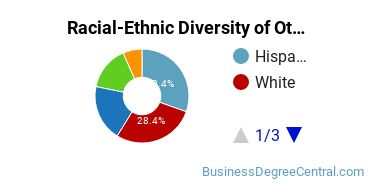 Racial-Ethnic Diversity of Other Business Associate's Degree Students