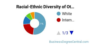 Racial-Ethnic Diversity of Other Business Bachelor's Degree Students