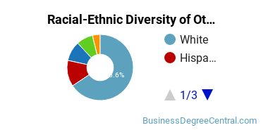 Racial-Ethnic Diversity of Other Business Basic Certificate Students