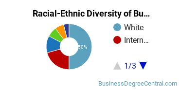 Racial-Ethnic Diversity of Business Management & Marketing Students with Bachelor's Degrees