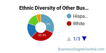 Other Business & Marketing Majors in CA Ethnic Diversity Statistics
