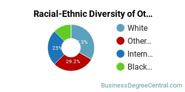 Racial-Ethnic Diversity of Other Business Doctor's Degree Students