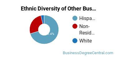 Other Business & Marketing Majors in FL Ethnic Diversity Statistics