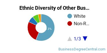 Other Business & Marketing Majors in MA Ethnic Diversity Statistics