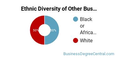 Other Business & Marketing Majors in MS Ethnic Diversity Statistics
