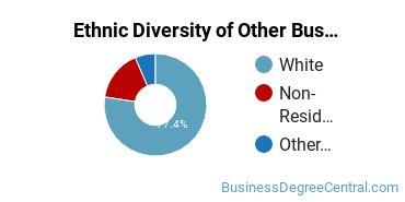 Other Business & Marketing Majors in NE Ethnic Diversity Statistics