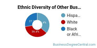 Other Business & Marketing Majors in NV Ethnic Diversity Statistics