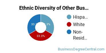 Other Business & Marketing Majors in NJ Ethnic Diversity Statistics