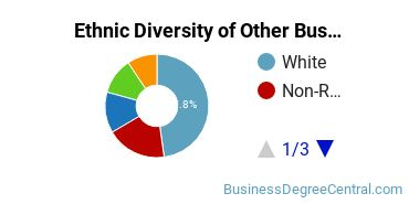 Other Business & Marketing Majors in NY Ethnic Diversity Statistics