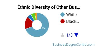 Other Business & Marketing Majors in SD Ethnic Diversity Statistics