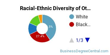 Racial-Ethnic Diversity of Other Business Undergraduate Certificate Students