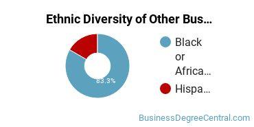 Other Business & Marketing Majors in VA Ethnic Diversity Statistics