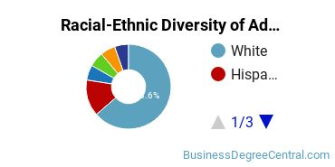 Racial-Ethnic Diversity of Advertising Students with Bachelor's Degrees