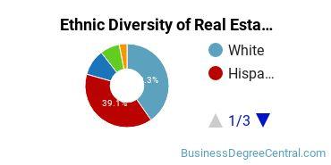 Real Estate Majors in CA Ethnic Diversity Statistics