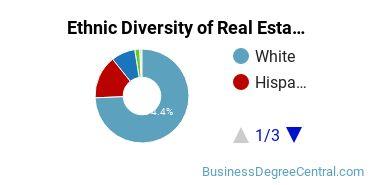 Real Estate Majors in CO Ethnic Diversity Statistics