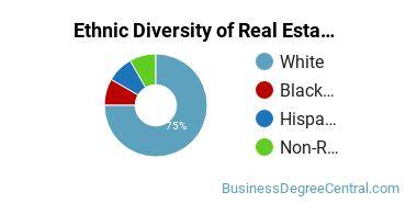 Real Estate Majors in CT Ethnic Diversity Statistics