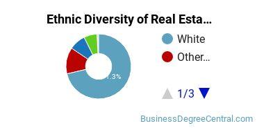Real Estate Majors in GA Ethnic Diversity Statistics