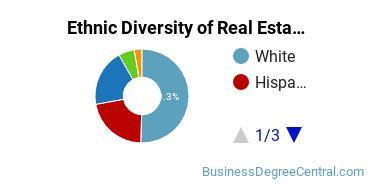 Real Estate Majors in IL Ethnic Diversity Statistics