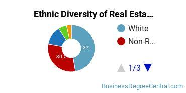 Real Estate Majors in NY Ethnic Diversity Statistics