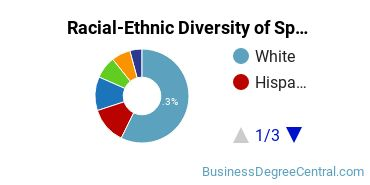 Racial-Ethnic Diversity of Specialized Marketing Students with Bachelor's Degrees