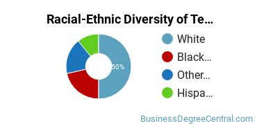 Racial-Ethnic Diversity of Telcom Management Basic Certificate Students