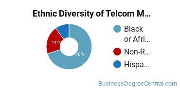 Telecommunications Management Majors in FL Ethnic Diversity Statistics