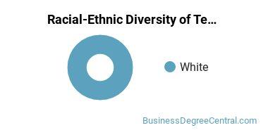 Racial-Ethnic Diversity of Telcom Management Graduate Certificate Students