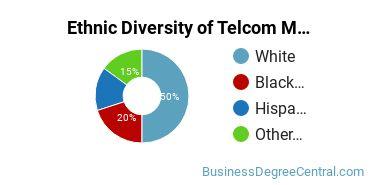 Telecommunications Management Majors in MA Ethnic Diversity Statistics
